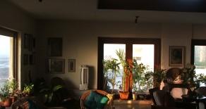 Silverene Apartment