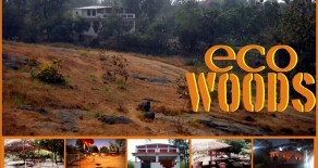 ecowoods agrotourism